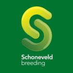 logo-schoneveld-breeding